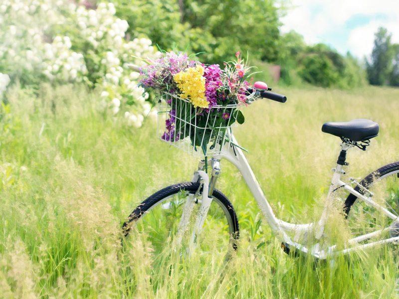 memorabili-esperienze_bici-colline